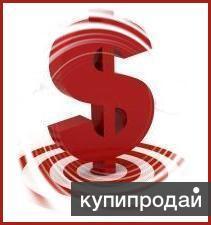 Помощь в получении кредитов и займов