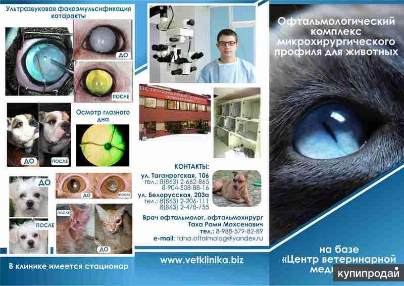 Офтальмолог Ростов-на-Дону медицинский центр да винчи ростов на дону