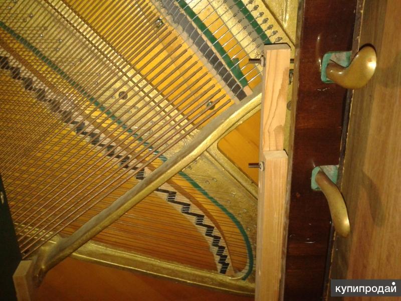 Настройщик пианино и роялей!