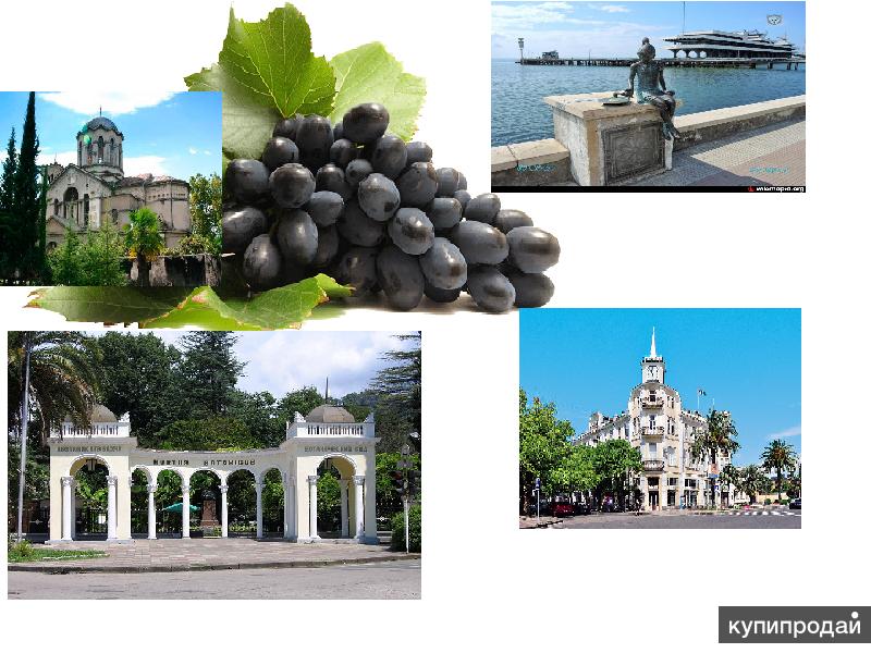 Приглашаю на работу в Абхазию