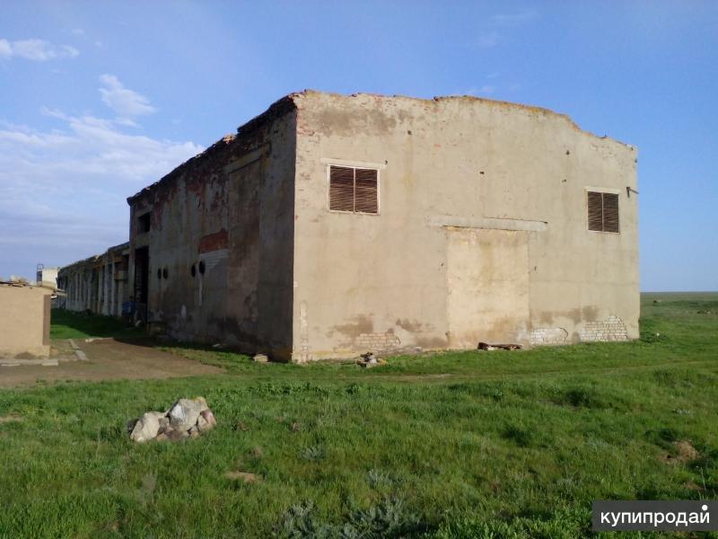 Продается Кошара- Животноводческая стоянка с газом, пастбище, пашня, водопой.