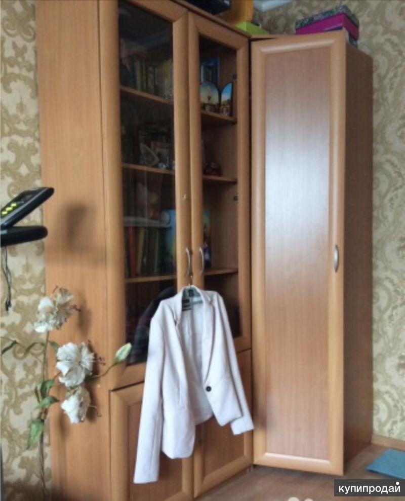Шкафы платяные угловой и книжный
