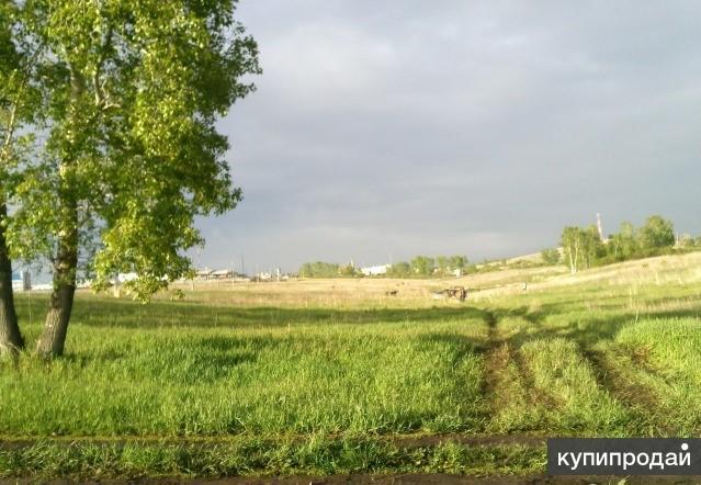 продам землю в октябрьском районе орентир Мясокомбинат 24 сотки