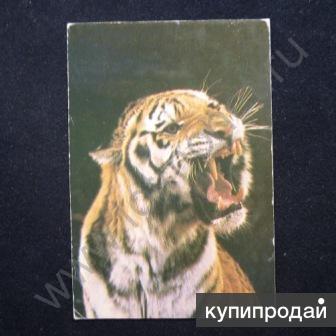 Календари карманные серия цирк Животные 80-х