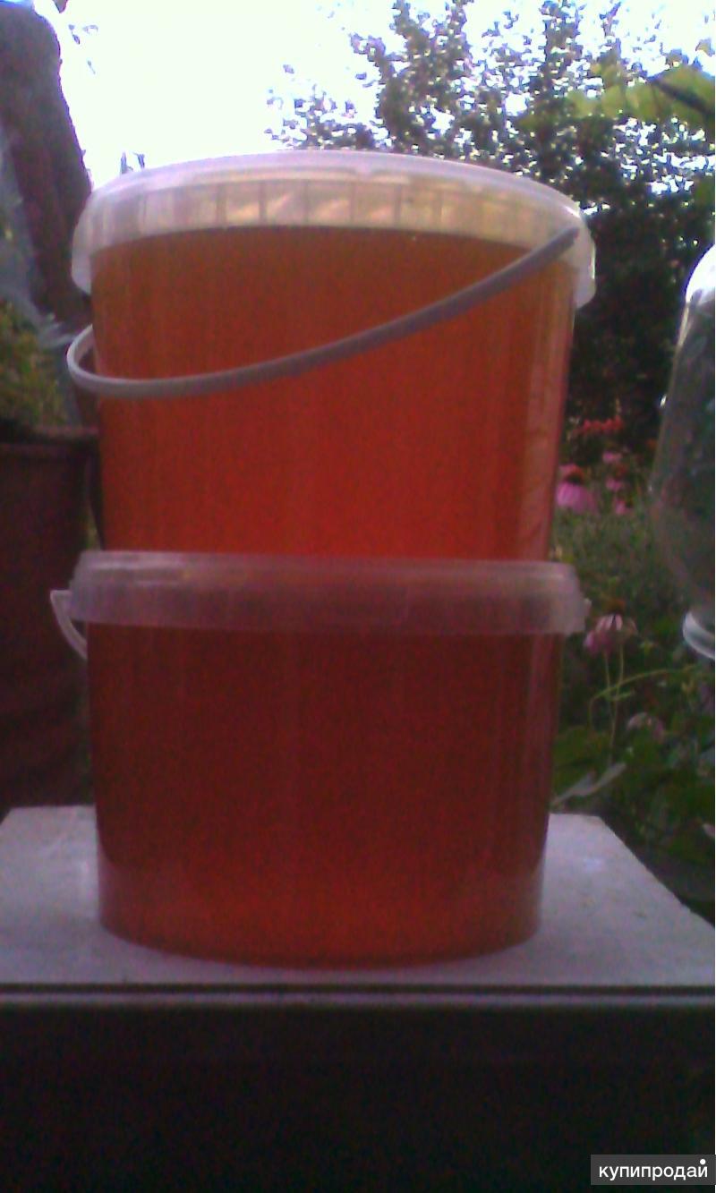 Породам мёд