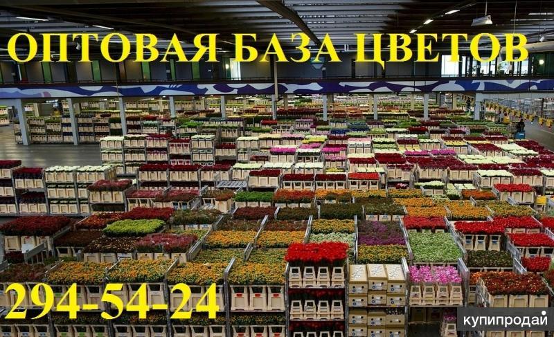 Где можно купить оптом цветы в красноярске, букет ко дню влюбленных и игры