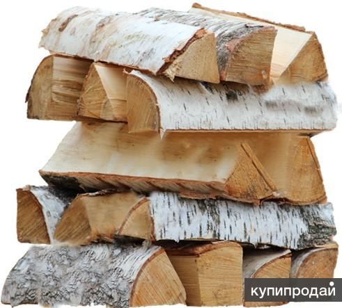 Дрова березовые колотые или чурки с доставкой в любой район Челябинска и сады