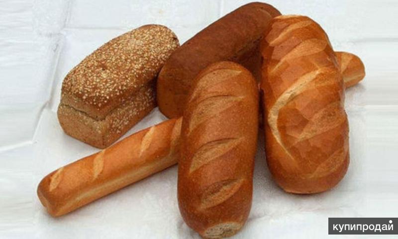 Хлебо-булочные изделия для откорма животных