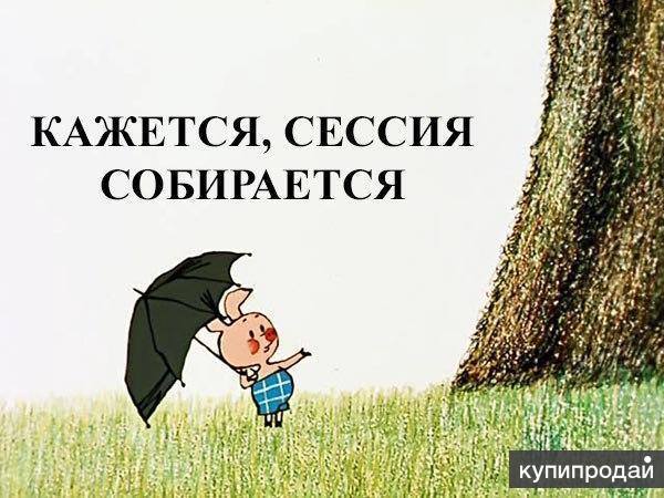 Поможем с решением задач в Ставрополе