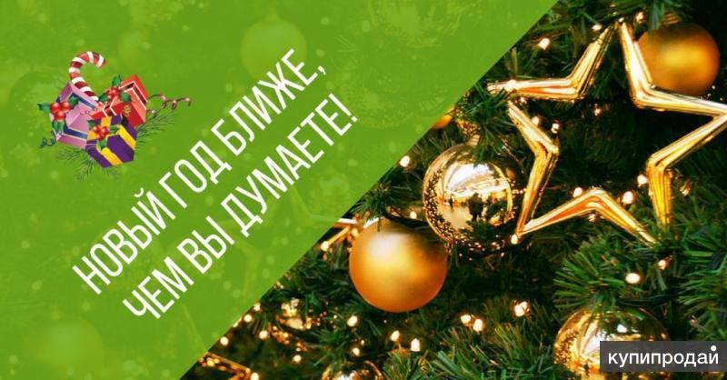 Новый Год ,Новогодние корпоративы  в Парад парк отель - Томск