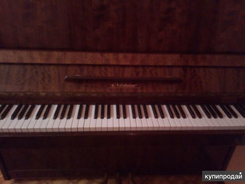 Пианино Nocturno