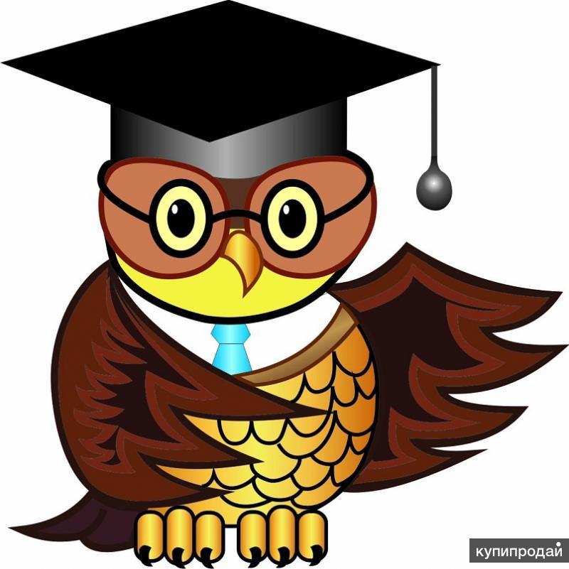 Компания Магазин Знаний Контрольные курсовые дипломные  Замучил со сдачей работ деканат Намаялся так что жизни не рад Проблему твою решим мы в два счета Помощь студентам наша работа