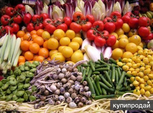 Картофель оптом, овощи оптом, лук оптом, капуста оптом, свекла оптом, морковь