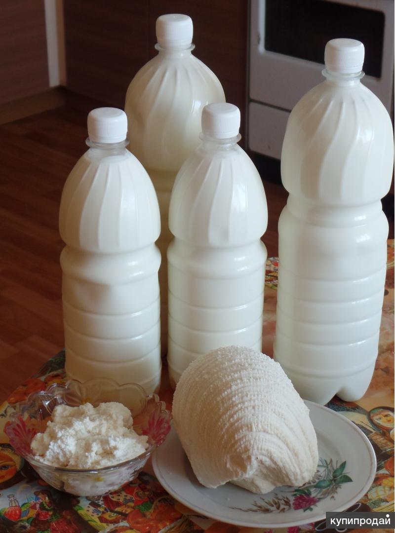 Продам деревенское молоко, домашний сыр
