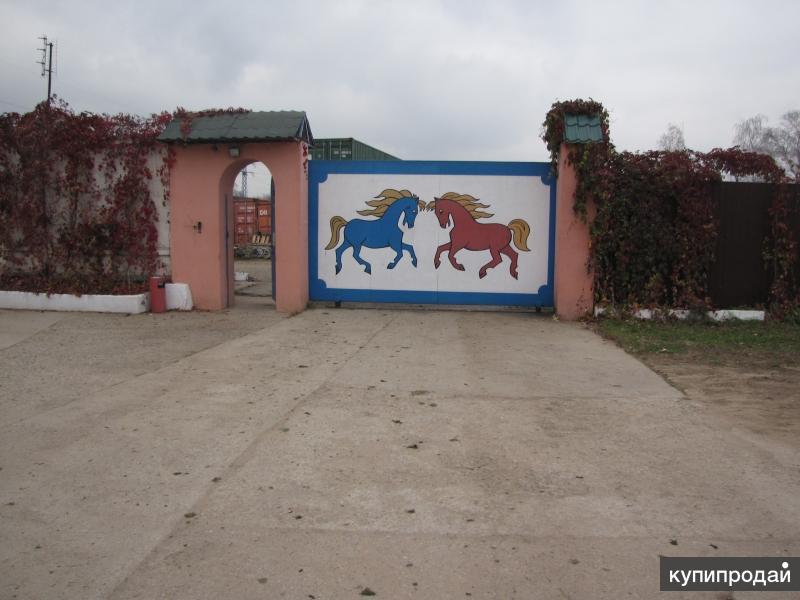 Продается конюшня в Подмосковье