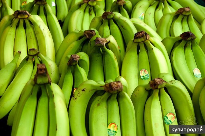 Продам фрукты овощи Египет,Марроко,Турция