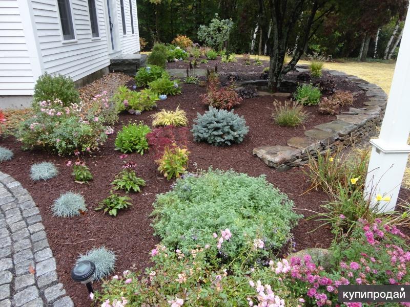Сад и огород барнаул