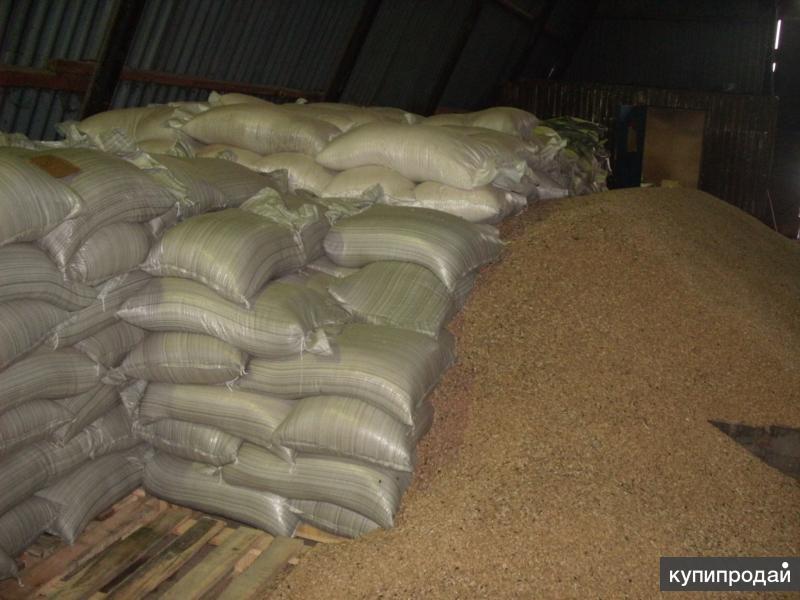 Пшеница оптом в мешках