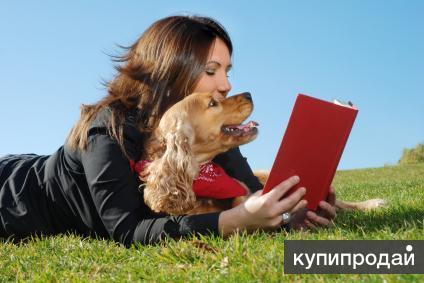 Передержка собак в городе Альметьевск.