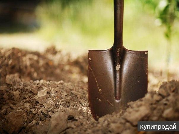 Выкопаем огород .