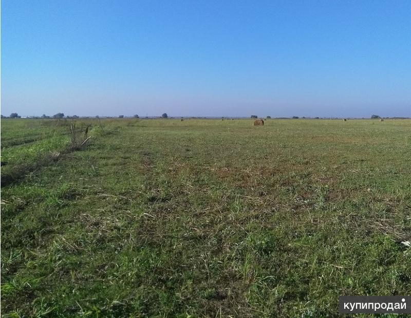 Земельный участок сельхозназначения 920 Га.
