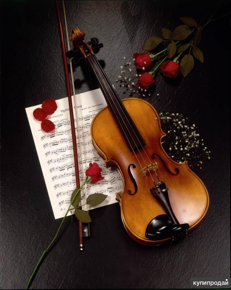 Обучение игре на скрипке