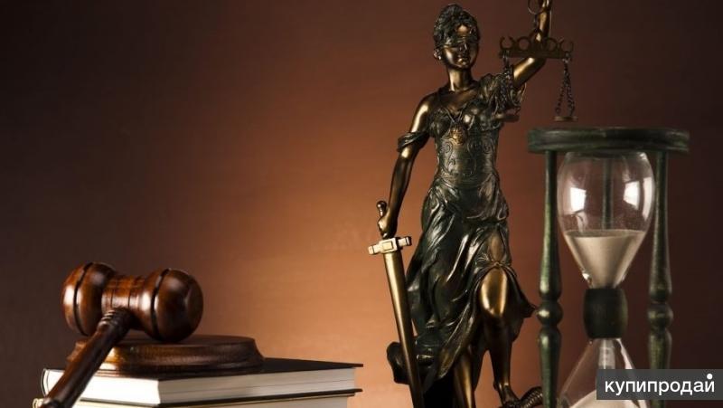 Предоставляю юридические услуги