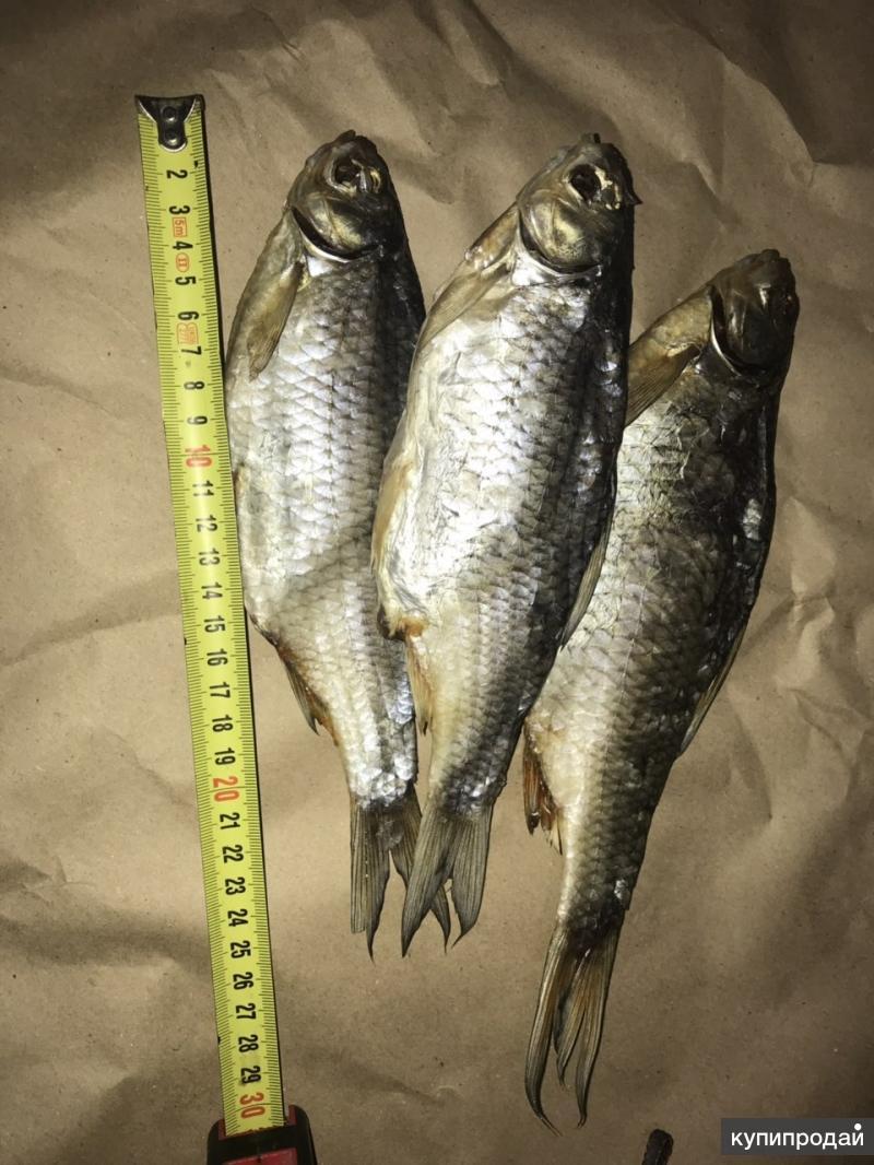 Рыба вяленая икряная