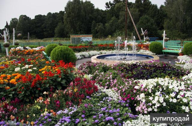 Продам землю в Томской области село Ювала .