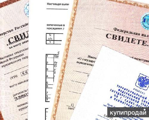 Регистрация ип в фирме электронная книга бухгалтерской отчетности