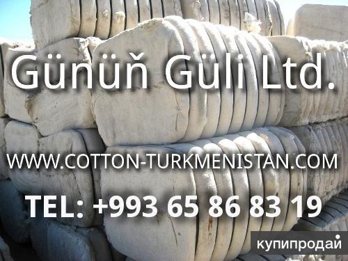 Линт хлопковый - Sell Cotton Linter