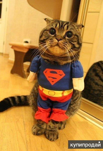 Костюмчик Супермена