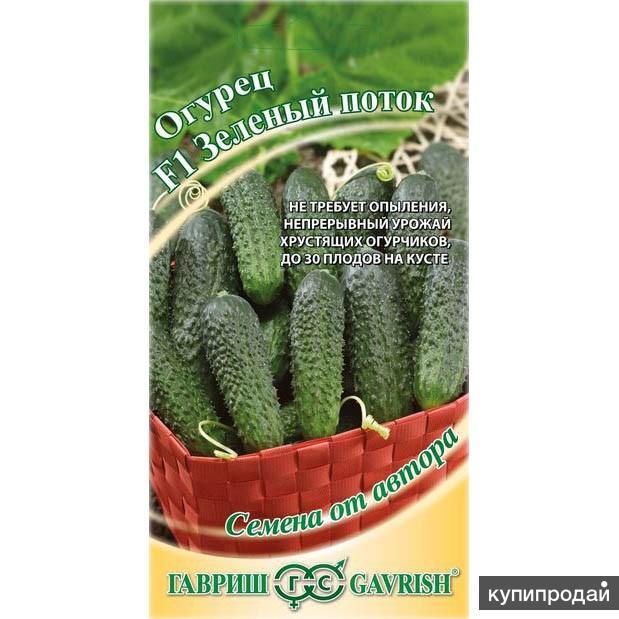 Продам семена-Огурец Зеленый поток F1, устойчивый гибрид для холодного лета