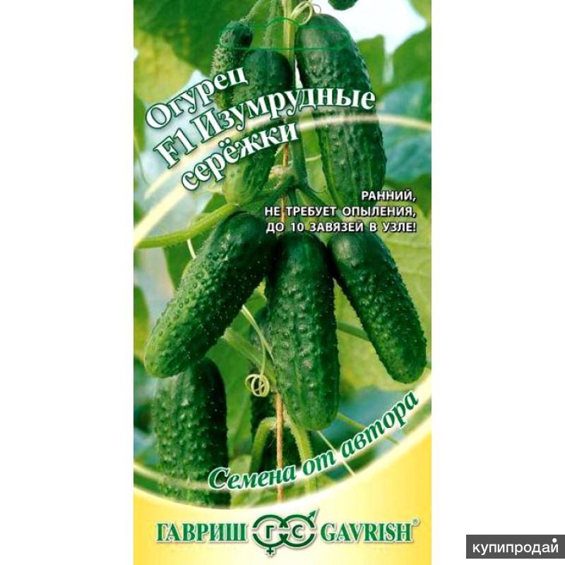 Продам семена-Огурец Изумрудные сережки F1, универсальный, дружное плодоношение