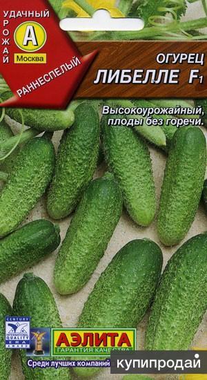 Продам семена-Огурец Либелле F1, стабильно урожайный, для консервирования