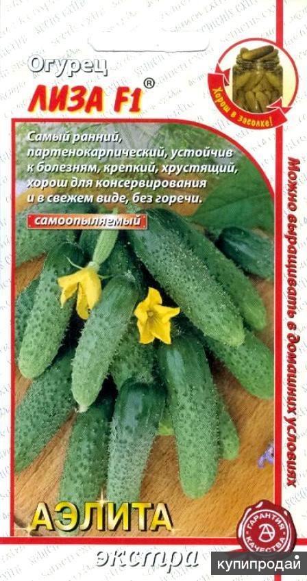 Продам семена-Огурец Лиза F1, очень скороспелый, урожайный, устойчивый