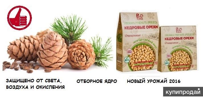 Ядро кедрового ореха в вакуумной упаковке 100 гр.
