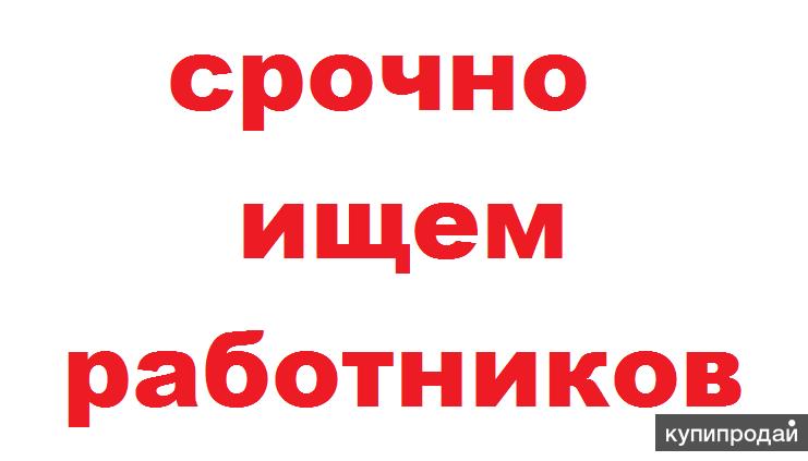 Работа на дому для жителей Ростовской области