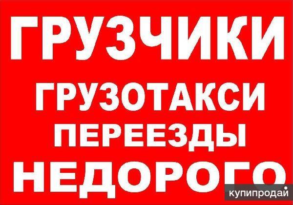 Грузовое такси с грузчиками Красноармейский-Советский