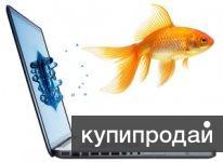 Скорая компьютерная помощь в Комсомольске-на-Амуре