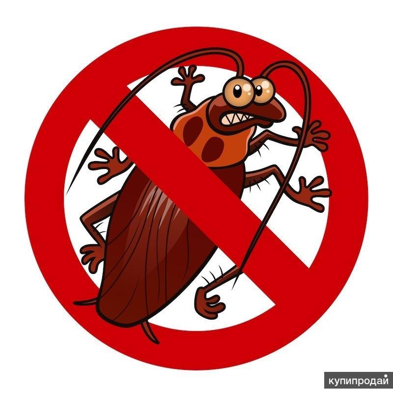 Уничтожение клопов, тараканов, мышей, крыс,