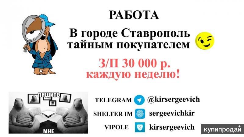 Работа тайным покупателем г. Ставрополь