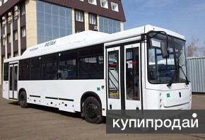 Автобусы пригород Нефаз-11-31 (45/89) мест. Метан