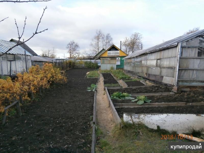 Продам сад в К/С №1 УВЗ «Садоводы».