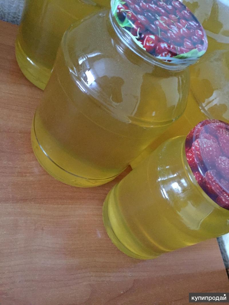Донниковый мёд 1л-600 3л-1500