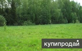 Продаётся земельный участок 2 га.в Трамшаке(земли Укской администрации)