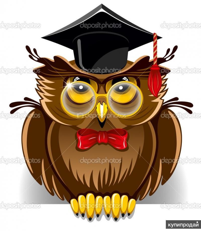 Курсовые, рефераты и дипломные работы на заказ