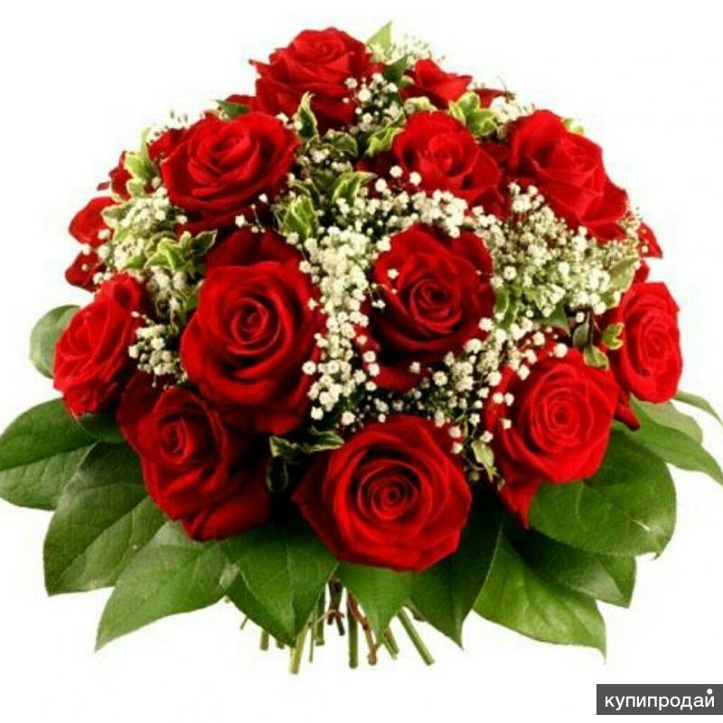 Flower delivery   Цветы в Москве и МО  