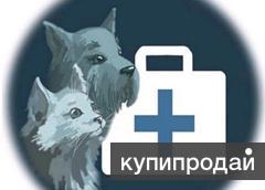 Ветеринарный врач на дом.