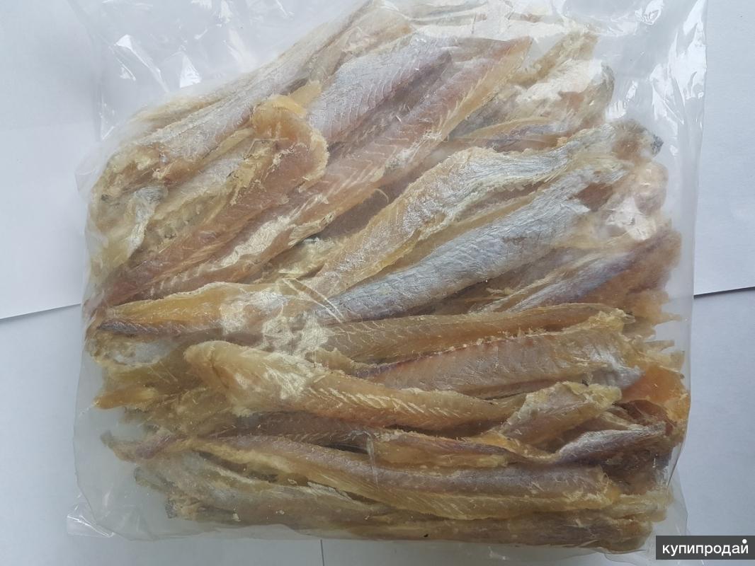 продам рыбу солено-сушеную